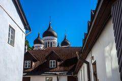 亚历山大・涅夫斯基大教堂(塔林,爱沙尼亚) 免版税库存图片