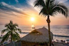 巴亚尔塔港海滩日落海洋椰子树小船 免版税库存图片