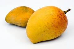 亚尔方索芒果(印度的Mangifera) 免版税库存照片