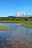 亚当斯山画象视图从Trout湖的 免版税库存照片