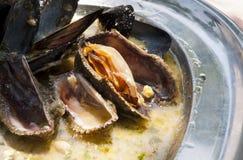 亚得里亚海的淡菜 免版税库存图片