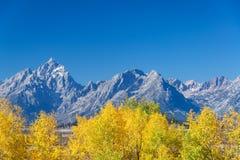 亚斯本树和Teton范围 免版税库存图片