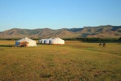 亚洲中央gers蒙古 库存照片