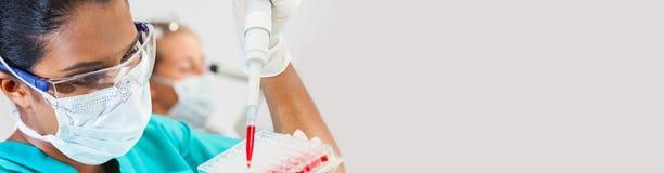 亚洲女性科学家吸移管血样在医学研究实验室 库存照片