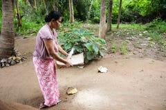 亚洲妇女清洁米 库存图片