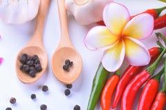 亚洲成份食物新鲜的香料菜蕃茄,辣椒,大蒜,胡椒,羽毛接近  免版税库存图片