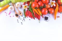 亚洲成份食物新鲜的香料菜蕃茄,辣椒, g 免版税库存照片