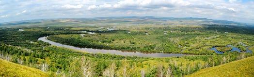 亚洲最大的沼泽地 免版税库存图片