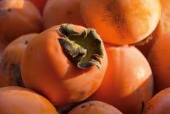 亚洲柿树柿子 免版税图库摄影