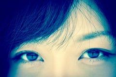 亚洲棕色眼睛 免版税库存照片