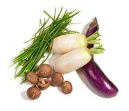 亚洲混杂的人群蔬菜 库存图片