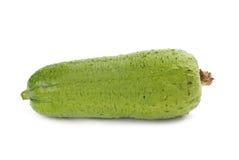 亚洲瓷丝瓜络普遍的蔬菜 免版税库存照片