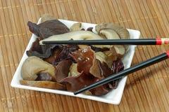 亚洲蘑菇 免版税图库摄影
