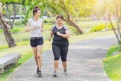 亚洲青少年连续肥胖和稀薄友谊跑步 免版税库存图片
