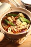 亚洲鱼咖喱 免版税图库摄影