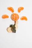 亚热带的果子 免版税库存照片