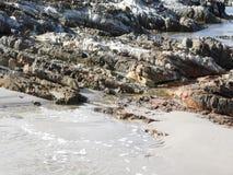 亚瑟河沿海步行,塔斯马尼亚岛 免版税图库摄影