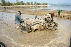 亚裔农夫,越南米领域,拖拉机耕犁 免版税库存图片