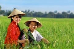 亚裔农夫 免版税库存图片