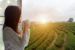 亚裔喝热的茶和看在窗口外面的妇女新早晨为在晴天看见茶园和农场 库存照片