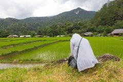 亚裔妇女孤独在绿色露台的米调遣, Mae巴生Luang 免版税库存照片