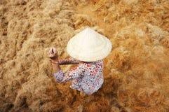 亚裔工作者,椰子,越南语,粗硬纤维,湄公河三角洲 库存图片