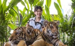 亚裔年轻女人捉住老虎尾巴 免版税库存照片