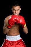 亚裔拳击人 免版税库存照片