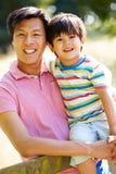 亚裔父亲和儿子画象在乡下 库存图片