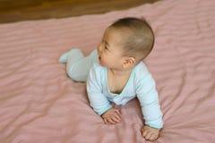 亚裔男婴画象一点7个月 库存照片