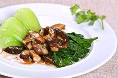 亚裔盘蘑菇素食主义者 免版税库存图片