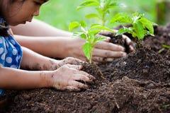亚裔种植在黑土壤的小女孩和父母年轻树 图库摄影