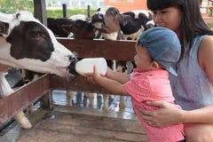 亚裔美丽的母亲是小心您逗人喜爱的新出生的婴孩饲料 免版税库存图片