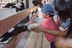 亚裔美丽的母亲是小心您逗人喜爱的新出生的婴孩饲料 免版税图库摄影