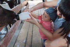 亚裔美丽的母亲是小心您逗人喜爱的新出生的婴孩饲料 图库摄影