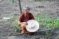 亚裔老农夫在菜园里 图库摄影