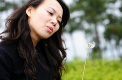 亚裔蒲公英妇女 免版税库存图片