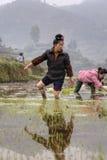 亚裔年轻农夫妇女通过ricefield泥赤足走 免版税库存照片