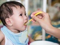 亚裔婴孩吃从匙子的6个月食物 免版税库存照片