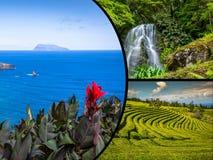 亚速尔群岛全景风景拼贴画从盐水湖葡萄牙的 免版税库存图片