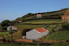 亚速尔群岛海岛一小的村庄 免版税图库摄影