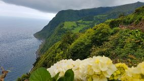 亚速尔群岛海岛风景 免版税库存图片