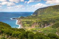 亚速尔群岛海岸线风景在重创的Faja,弗洛勒斯海岛 Portug 库存照片
