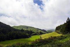亚速尔群岛青山风景 图库摄影