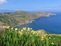 亚速尔群岛,葡萄牙 免版税库存图片