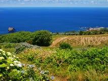 亚速尔群岛ilslands海景和绿色山谷葡萄牙 库存照片