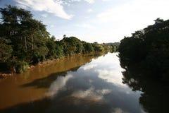 亚马逊地区河 免版税图库摄影