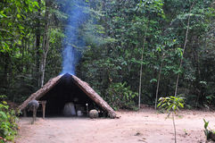 亚马逊处理橡胶土气部件 免版税库存照片