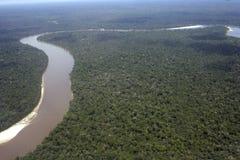 亚马逊美国盆地南的秘鲁 图库摄影