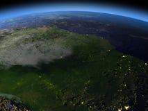 亚马逊雨林在晚上 向量例证